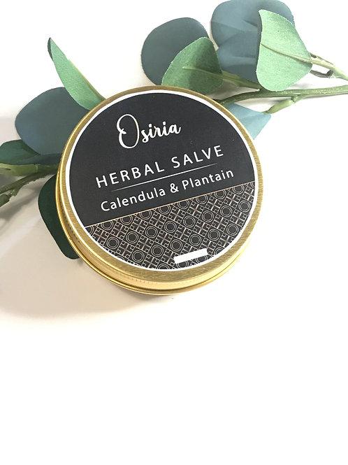 Bug Bite Salve, Herbal First Aid , Rash and Burn, Herbal Skin Care