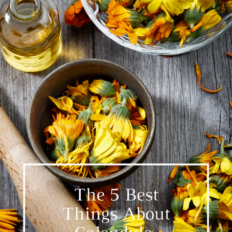 The 5 Best Things About Calendula