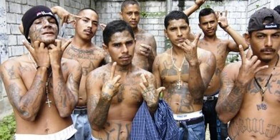 Mexican Drug Cartel Investigations