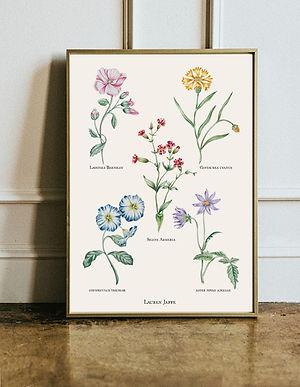 Botanical Poster visual.jpg