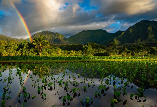 Hawaii - Kauai 2