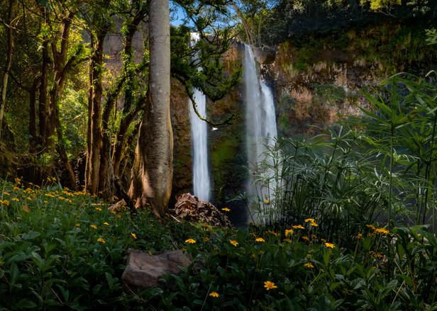 Hawaii - Wailua Falls