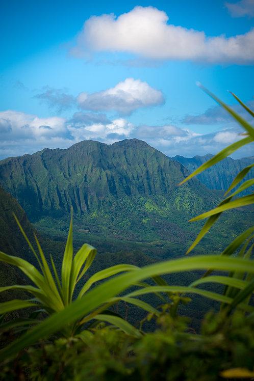 Hawaiian Ridge