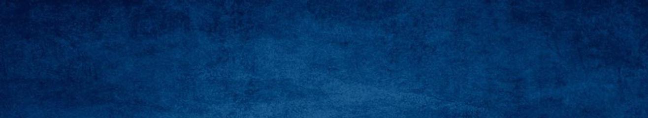 BARRA-CABECALHO-PATOLOGIAS-SBACV.jpg