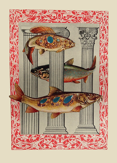 MelodyOwen_natureculture_fish.png