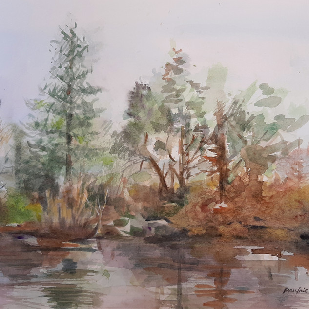 Riverbank Arklow