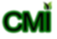 CMI World LOGO