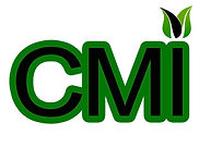 CMI World LOGO