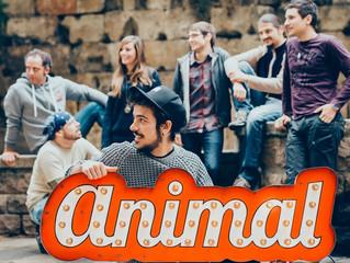 Comença una nova aventura:  ANIMAL!