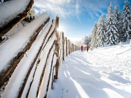 Trail hivernal du Sancy 2016