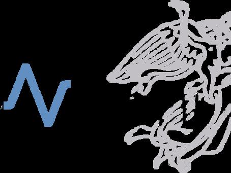 La logica del sensibile. Iconico, plastico, visuale e oltre. Villa Vigoni 21-23 settembre 2020