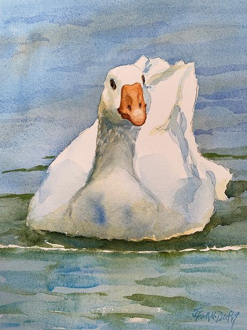 River Goose