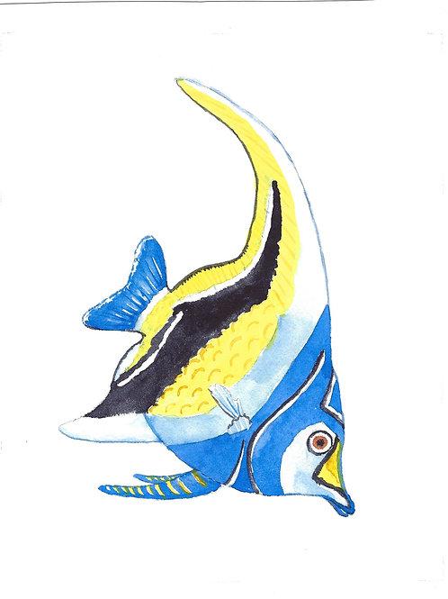 Tropical Fish39 min