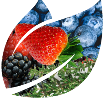 Berry, Basil & Thyme Shrub