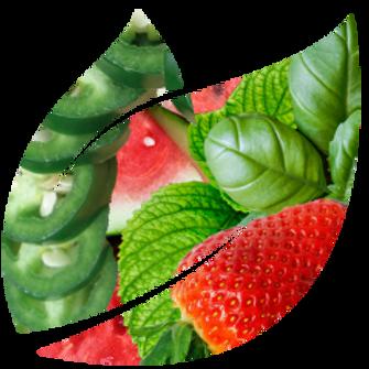 Watermelon, Strawberry & Jalapeño with Herbs (Mint & Basil)
