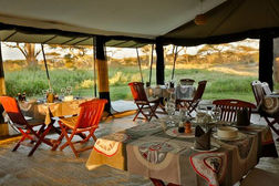 tanzania wildlife photography safari glamping