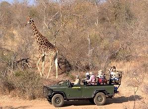 South Africa Photography Safari