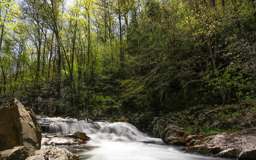 Smoky Mountains Photography Workshop