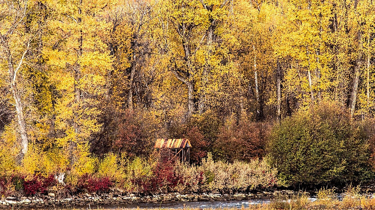Fall Grand Teton National Park