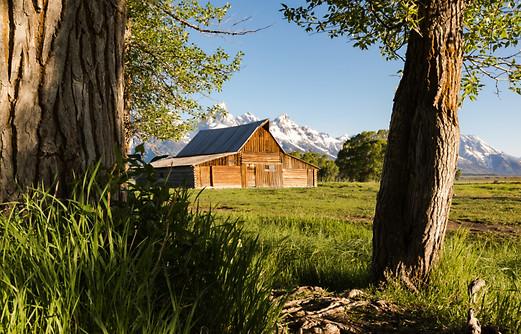 Sunrise Grand Teton National Park
