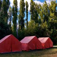 acampadas-castillo-castilnovo.jpg