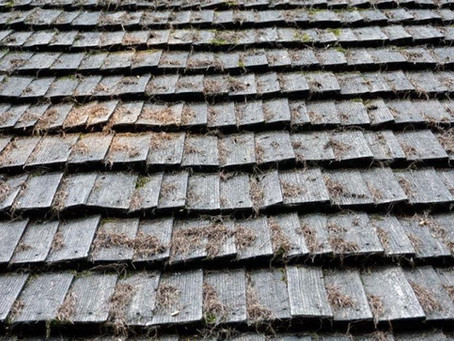 Everything You Need to Know About Cleaning Your Roof