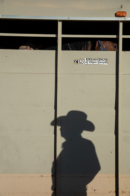 Dad's shadow under the horse's watchful eye