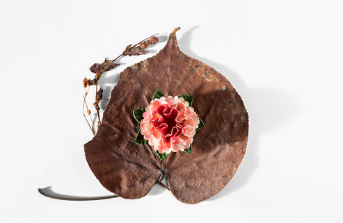 Zita's flower pin on dried plants she kept from a trip to Hawaii.