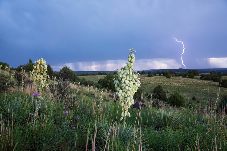 """A member of the family remembers Zita saying, """"I've been all over the world and there are still places on this ranch I haven't seen."""".    The view coming off the mesa during a storm."""