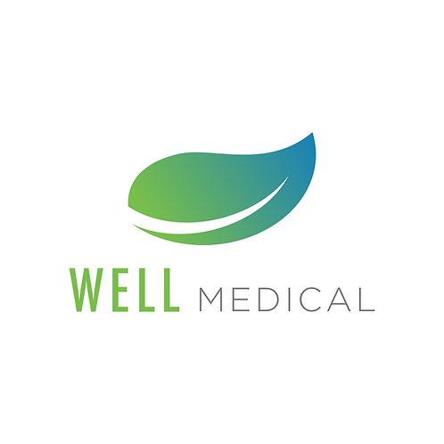 Well Medical Logo & Branding Package