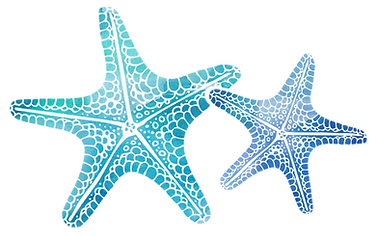 Jeanine Rousso Counseling Starfish.png