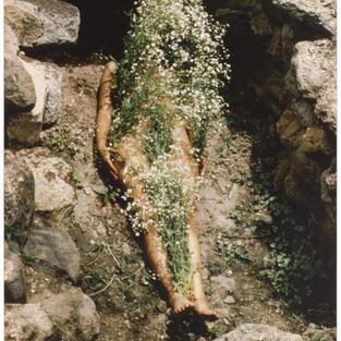 Examining Ana Mendieta's Silueta Photograph Through a Feminist Lens