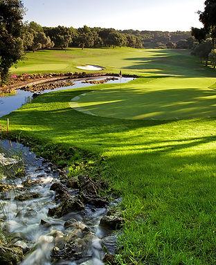 Golf_Vlogs.jpg