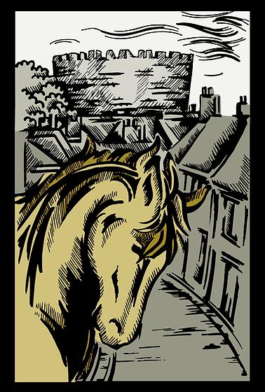 BAY HORSE NO WRITING.bmp