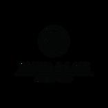 Alisha&Lace logo.png