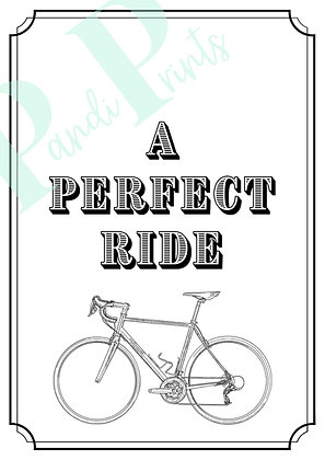 Perfect Ride!