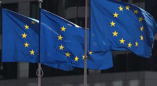 慕安会主席:新冠疫情是欧盟加强团结的契机
