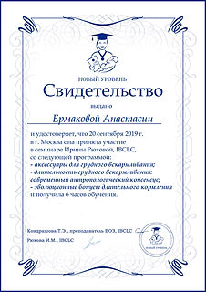Ermakova-1-5новый уровень ирина рюхова.j