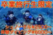 卒業旅行 ダイビング シュノーケル