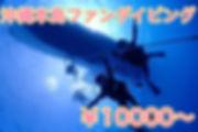 本島ファン.jpg