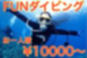 沖縄 本島 FUN ダイビング