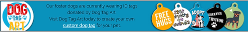 Dog Tag Art.PNG