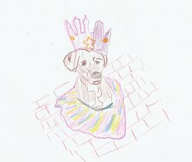 Pet portrait png.png