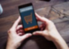 SSL secured payment gateway, online payment