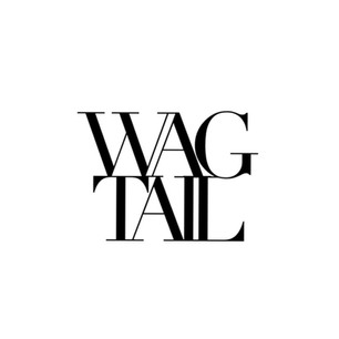 wagtail.jpg