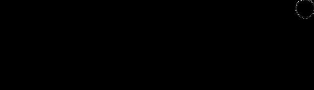 ECCO (1).png