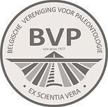 BVP.png