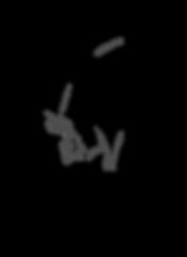 black web logo.png