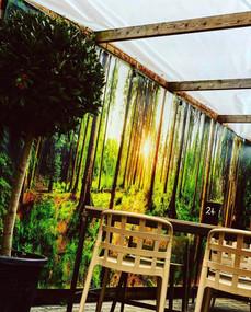 Garden Forest .jpeg