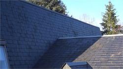 Inspection toiture 1JPG